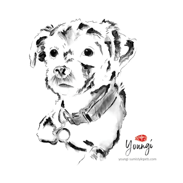 Martini: Terrier Mix Art   Youngi-Sumistyle pets