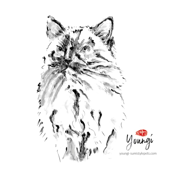 Lucy 2: Ragdoll Art | Youngi-Sumistyle pets