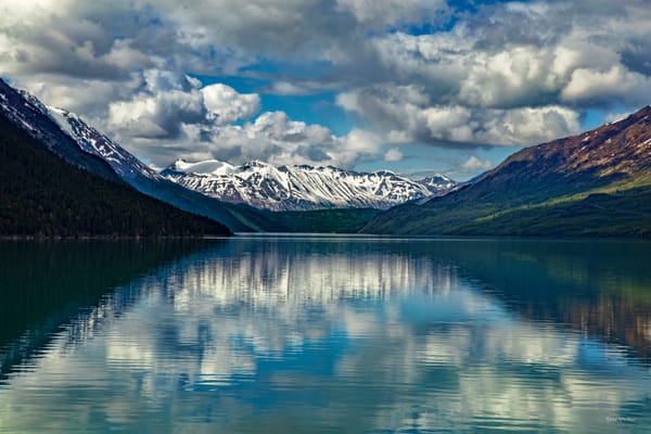 Kenai Lake 8457 Photography Art | Koral Martin Fine Art Photography