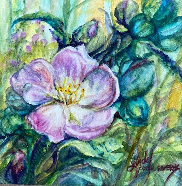 Lindy Cook Severns Art | Pretty In Pink, original watercolor