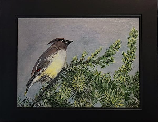 Available   Original Paintings