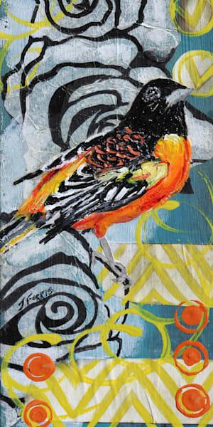 Print of Baltimore Oriole by Jennifer Ferris