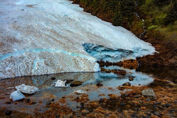 Portage Glacier 5 Fingers Creek Area  8346 Photography Art | Koral Martin Fine Art Photography