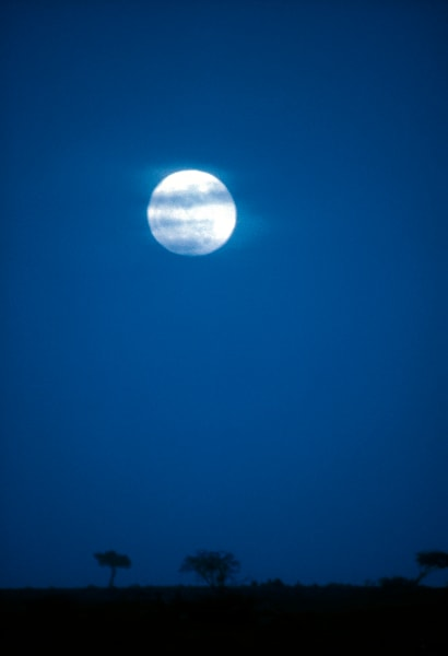 Blue Moon rise on the Serengeti