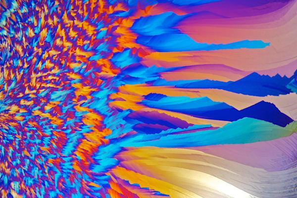 Ice Phoenix Art | Carol Roullard Art