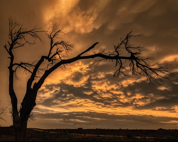 Texas Storm Sunset Art | Jim Livingston Art