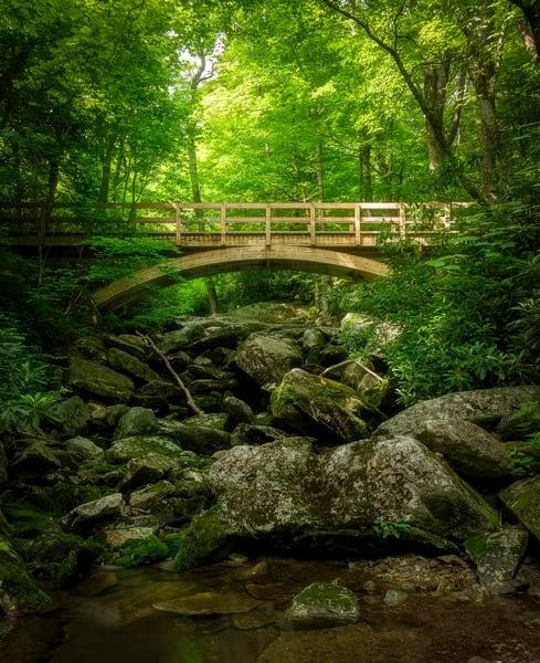 Beautiful Forested Mountain Bridge Print