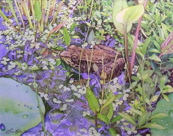 Young Green Frog - watercolor painting by Erin Pyles Webb
