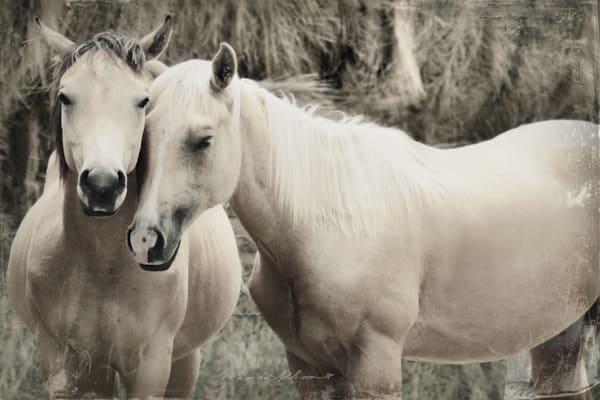 HORSES Sepia Art