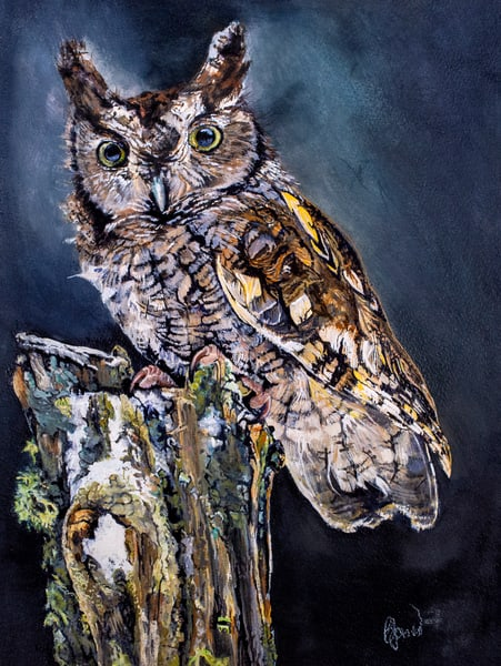 Night Owl Art   Jones Family Art