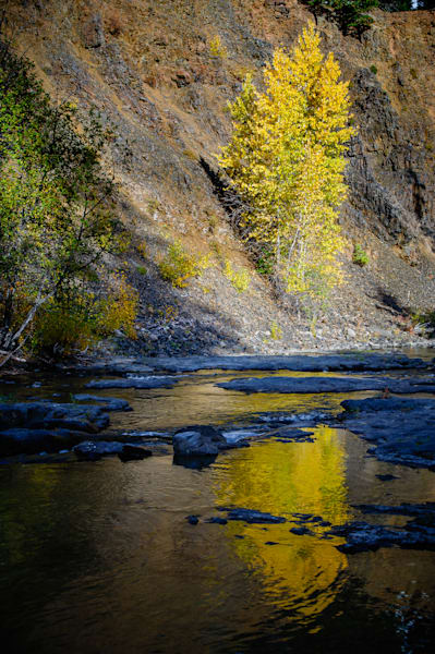 Autumn Reflections, Little Naches River, Washington, 2016