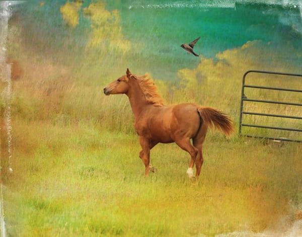 CHESTNUT HORSE ART
