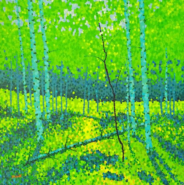 Aspen Spring Art | Jim Pescott Art