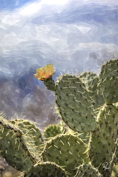 Prickly Pear II: Contemporary Art | Lion's Gate Photography