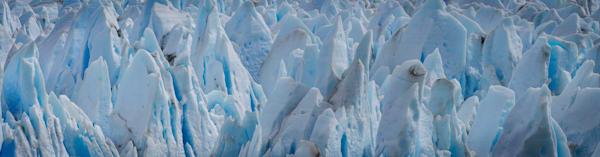 Glorious Glacier Photography Art   Cerca Trova Photography