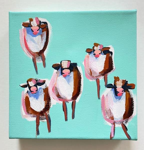 Mini Cows Key West | Lesli DeVito
