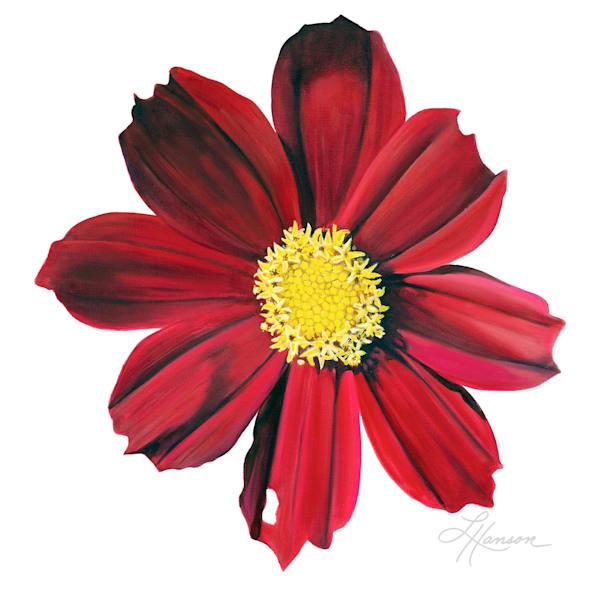 Red Velet Cosmos Art | Leanne Hanson Art