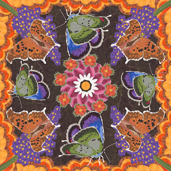 Butterflies And Flowers Art | smacartist