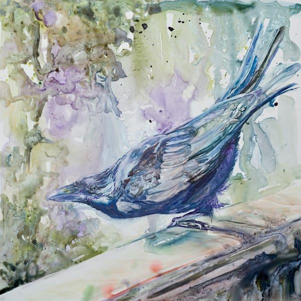 Raven Yukon