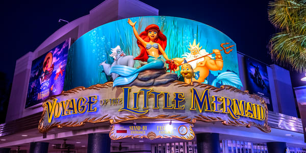 Voyage Of The Little Mermaid Photography Art | William Drew Photography