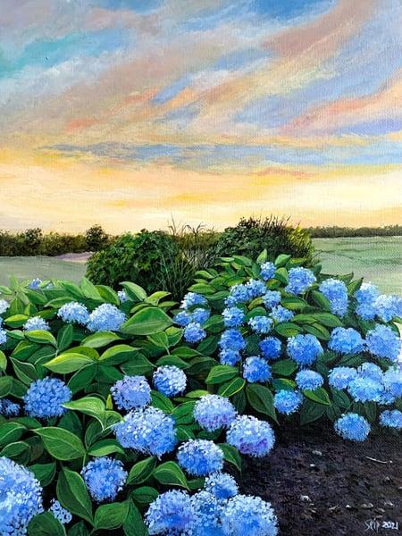 Cape Cod Hydrangeas Art | Skip Marsh Art
