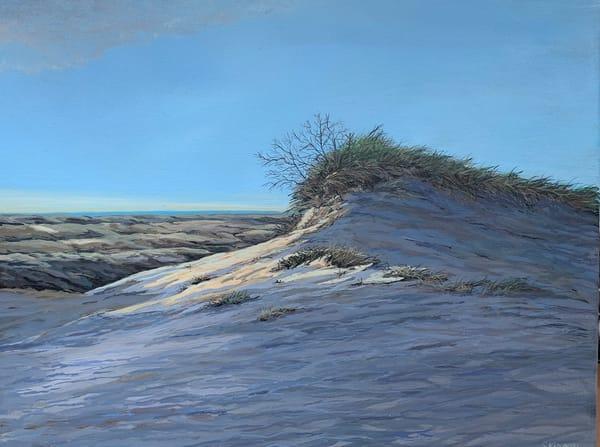 Cape Cod Dune Lands Art   Skip Marsh Art