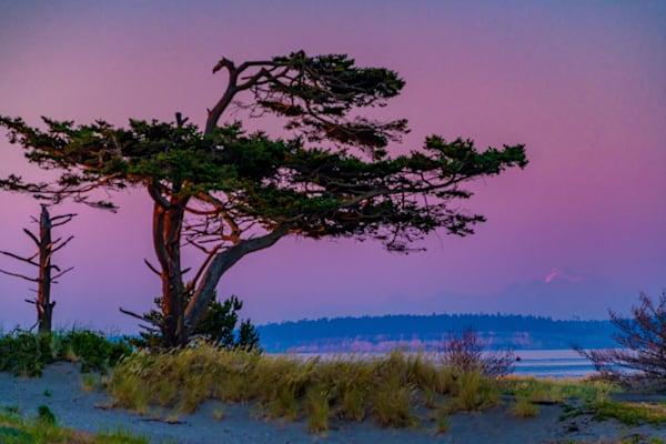 West Coast Wonders Photography Art | kramkranphoto