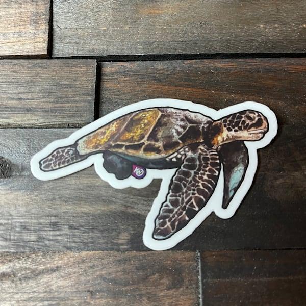 Floating Sea Turtle Sticker   Water+Ink Studios