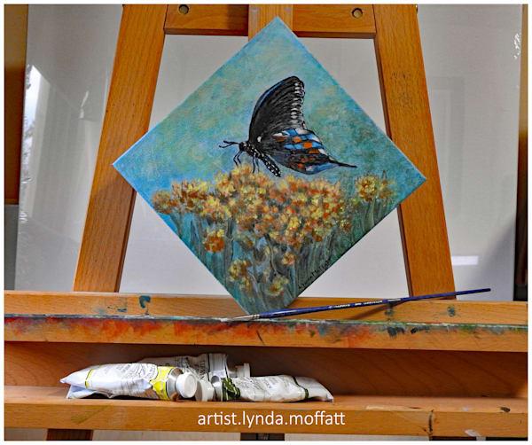 Black Swallowtail Butterfly Art | Lynda Moffatt Fine Arts