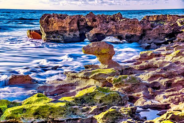 Coral Cove 2