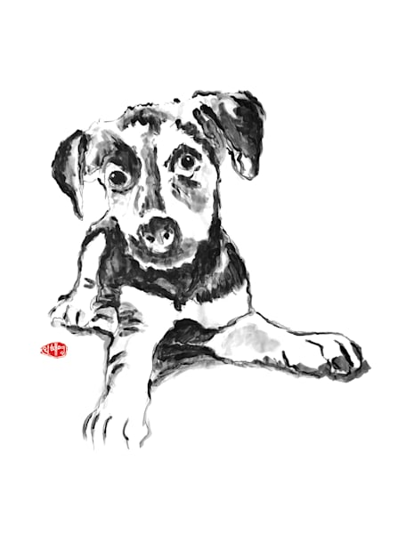 Brooklyn: Terrier Mix Art | Youngi-Sumistyle pets
