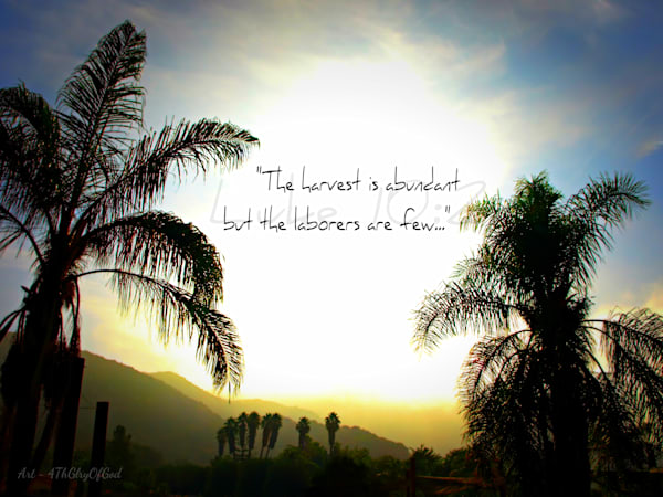 """The Harvest is Abundant..."" - Matthew 9:37-38 & Luke 10"
