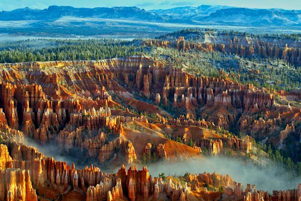 Bryce Canyon Art | Cincy Artwork
