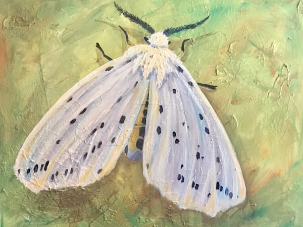 white ermine moth painting with abstract background