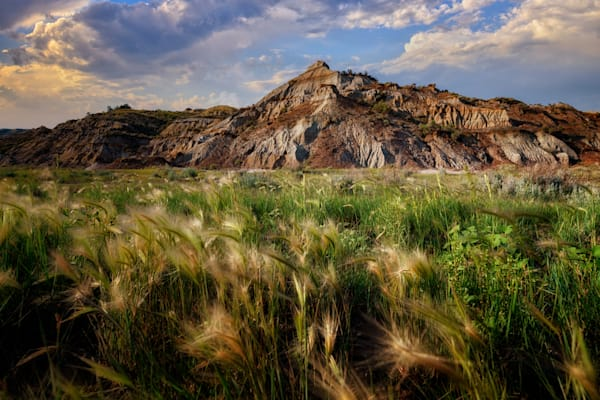Summer Evening in the Badlands   Shop Photography by Rick Berk
