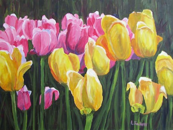 Pink And Yellow Tulips Art | Linda Sacketti