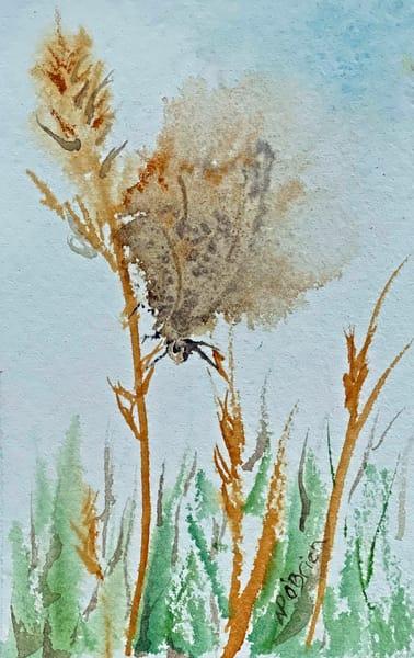 Butterfly  In Motion Art | Color Splash Ranch