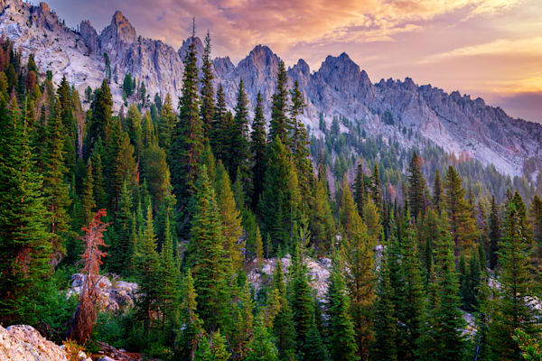 Morning in the Sawtooths | Shop Photography by Rick Berk