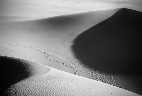 Black and White Death Valley 22584bw