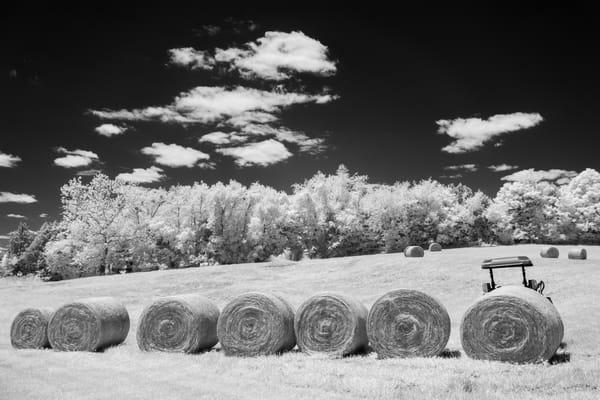 Indiana Hay Rolls 2879 16x24