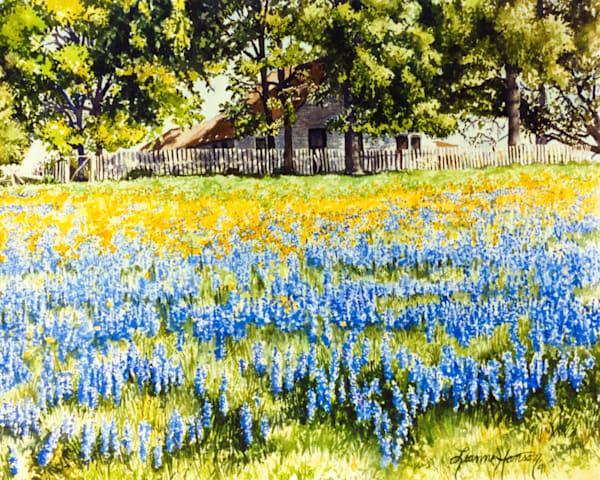 Bluebonnets And Buttercups Art   Leanne Hanson Art