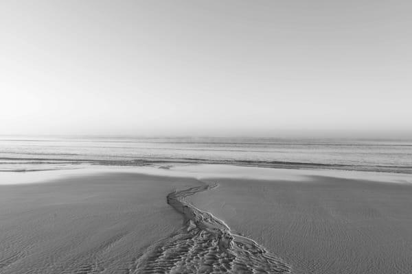Veins Of Sand No. 12 Art | Jonah Allen Studio & Gallery