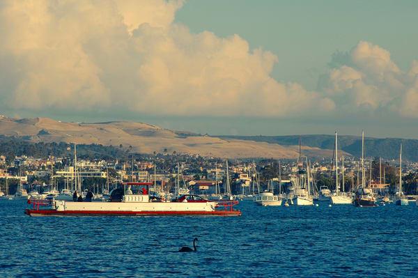 Balboa Auto Ferry & Rupert Art   Shaun McGrath Photography