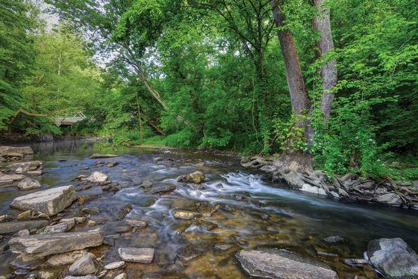 Boones Creek 5791
