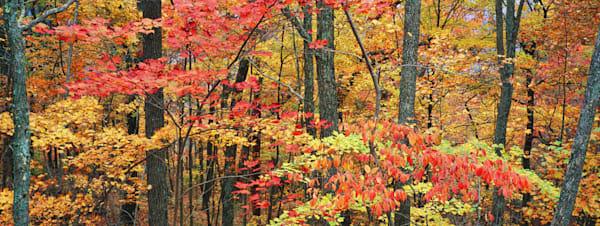Autumn Kingdom Come Photography Art   Jeff Rogers Photography, Inc.