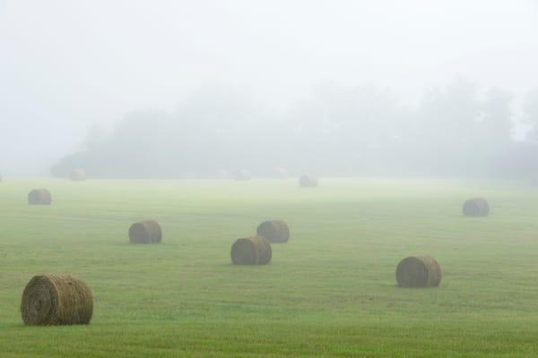 Foggy Hay Field 1830 24x16