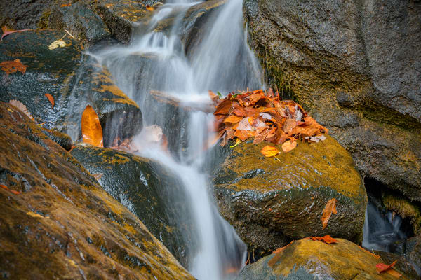 Waterfall EKY 4138 24x36