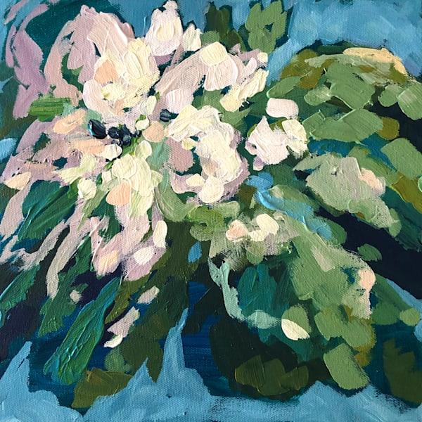 Abstract Magnolia   Sue Riger Studio