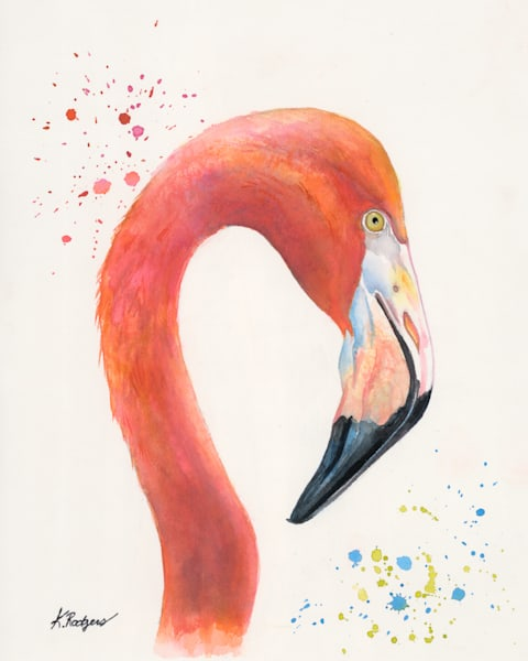 The Cuban Flamingo Art   Katherine Rodgers Fine Art