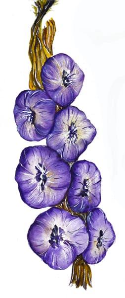 Single Garlic In Series Art   Drivdahl Creations